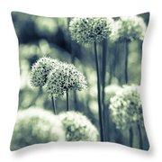 Allium 3 Throw Pillow