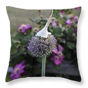 Allium Blossom With Cap Throw Pillow