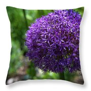 Allium Gladiator Closeup Throw Pillow