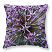 Allium Macro Throw Pillow