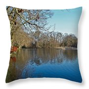 Alloway Lake - New Jersey - Usa Throw Pillow