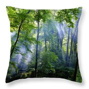 Allschwiler Wald Throw Pillow