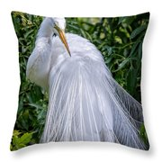 Alluring In White Throw Pillow