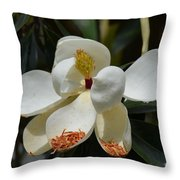 Alluring Moment Throw Pillow
