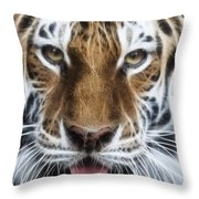 Alluring Tiger Throw Pillow
