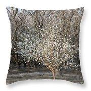 Almond Orchard 1 Throw Pillow