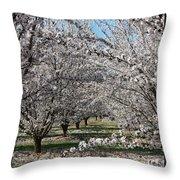 Almond Orchard Throw Pillow