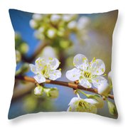 Almond Tree Branch Throw Pillow