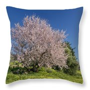 Almond Tree In Meadow Throw Pillow