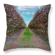 Almond Trees Of Button Willow Throw Pillow