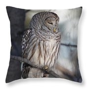 Almost At Rest Throw Pillow