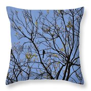Almost Bare With Birds II Throw Pillow