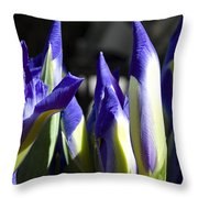 Almost Blooming - The Iris Throw Pillow