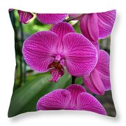 Almost Deep Purple Throw Pillow