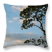 Almost Evening Throw Pillow
