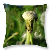 Almost Gone Dandelion Seeds Throw Pillow