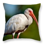 Almost Grown Throw Pillow