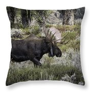 Almost Off Throw Pillow