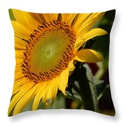 Almost Perfect Yellow Throw Pillow
