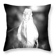 Almost Time Throw Pillow