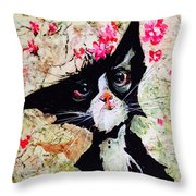 Almost Won A Beauty Contest Throw Pillow
