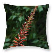 Aloe Flower Throw Pillow