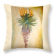Aloe In The Sunlight Throw Pillow