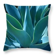 Aloe 2 Throw Pillow