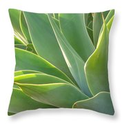 Aloe Throw Pillow