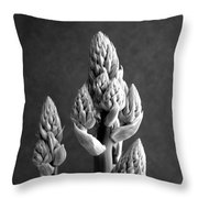 Aloe Maculata Stalk Throw Pillow