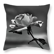 Alone I Stand Throw Pillow