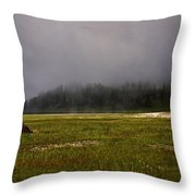 Alone In Fog Throw Pillow