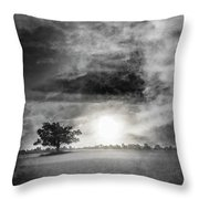 Alone In The Dark Throw Pillow