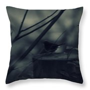 Alone In The Darkness Throw Pillow