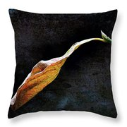 Alone In The Fall Throw Pillow