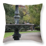 Alone In The Fountain Throw Pillow