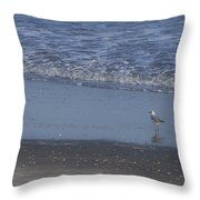 Alone In The Sand Throw Pillow