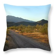 Along A Country Road Throw Pillow