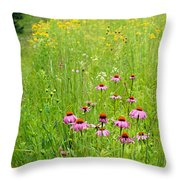 Along A Prairie Path Throw Pillow