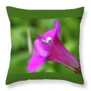 Along Came A Spider  Throw Pillow
