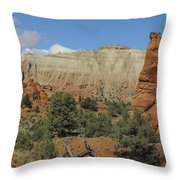 Along Panorama Trail Throw Pillow