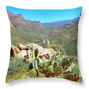 Along The Apache Trail Throw Pillow