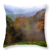 Along The Brp Throw Pillow