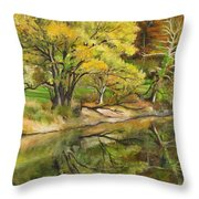 Along The C And O Canal Throw Pillow