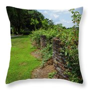 Along The Curved Wall Throw Pillow
