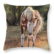 Along The Dusty Trail Throw Pillow