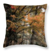 Along The Edge Of October Throw Pillow
