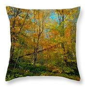 Along The Lock And Dam Trail Throw Pillow