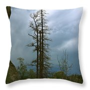 Along The Needles Highway Throw Pillow