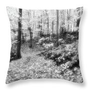 Along The Path Bw  Throw Pillow